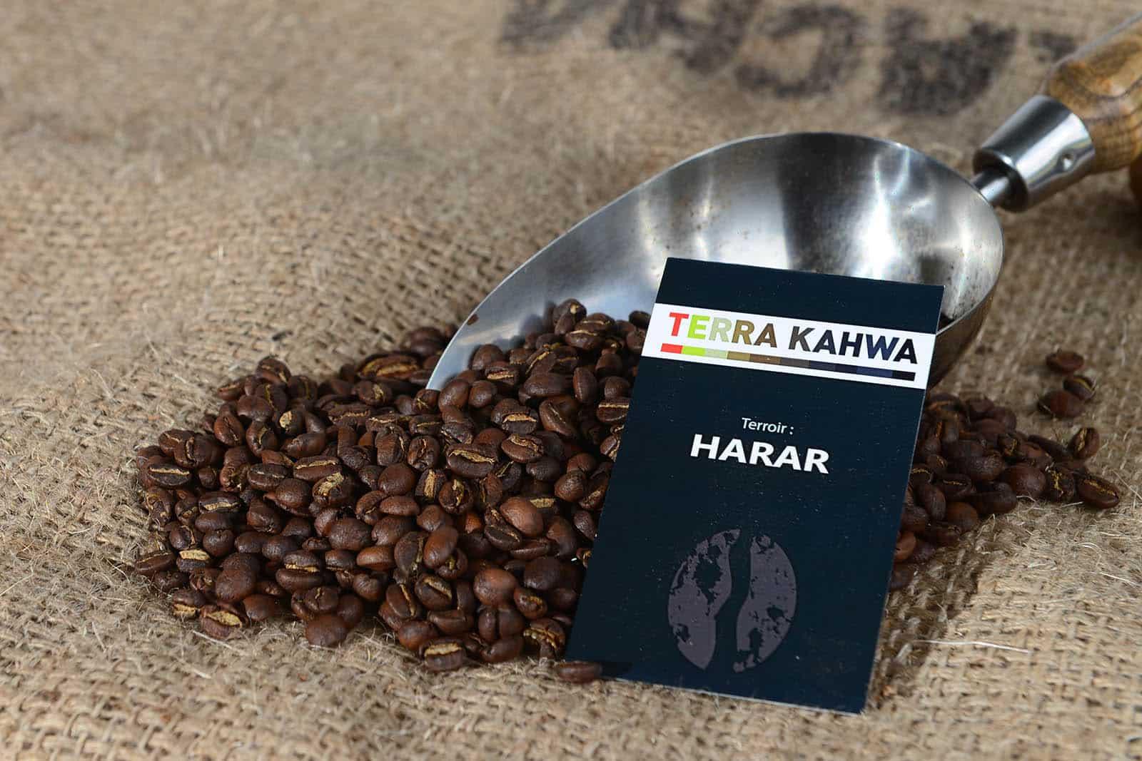 caf torr fi harar caf d ethiopie origine certifi e terra kahwa 500g terra kahwa. Black Bedroom Furniture Sets. Home Design Ideas