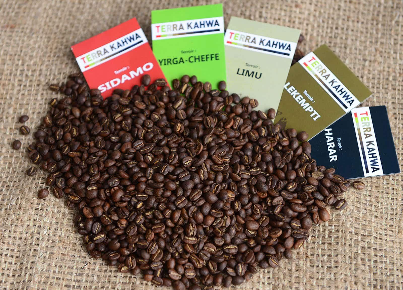 assortiment gastronome 5 grands caf s d ethiopie origine certifi e 5kg terra kahwa. Black Bedroom Furniture Sets. Home Design Ideas