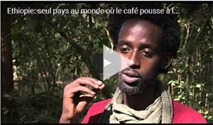 café-ethiopien-01