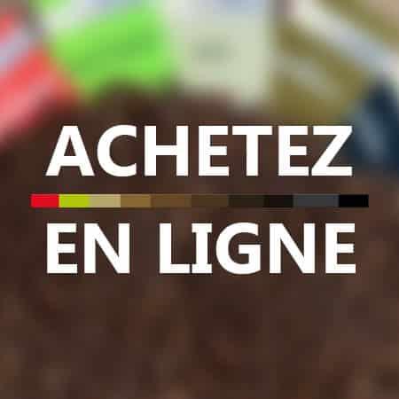 Boutique en ligne café éthiopien